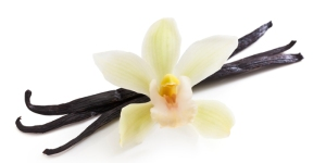 vanilla-with-flower-700-web